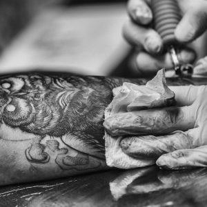 owl, tattoo, bird